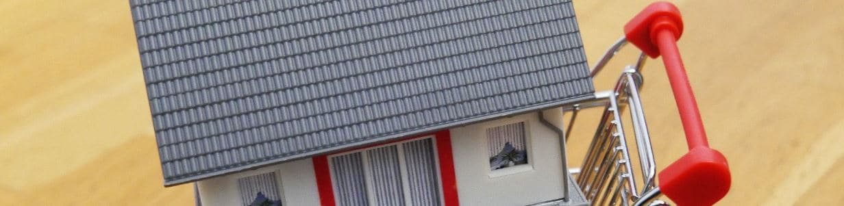 Sales and Purchases of Property: House in a shopping basket.